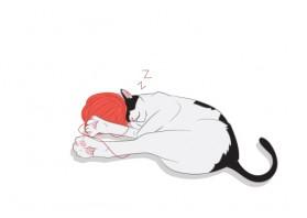 잠자는나비