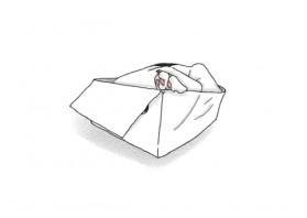 박스속의 나비